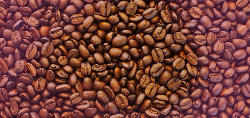 cafe quita la celulitis