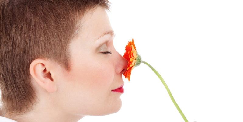 Respirar por la nariz, el disfrute de los olores más característicos de la naturaleza