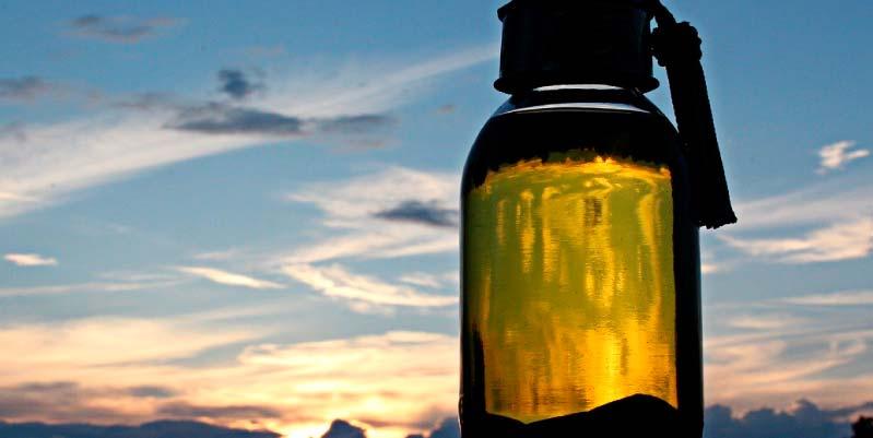 aceite de argan precio