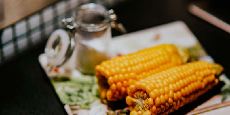 propiedades del maiz blanco