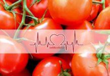 TOP 10 Mejores Nutricionistas en Valencia