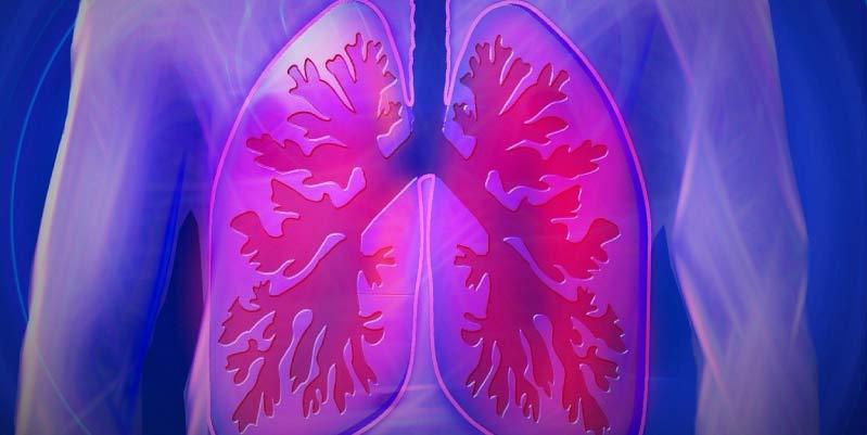 fibrosis quistica que es